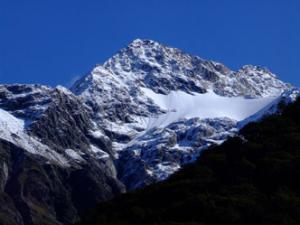 2008 Carbon-Neutral Trip to New Zealand (Part one)