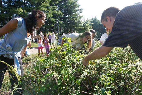 Students plant, tend and learn in the Edible Schoolyard